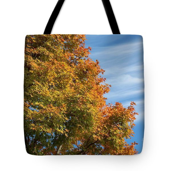 Autumn Anticipation Tote Bag by Carol Groenen