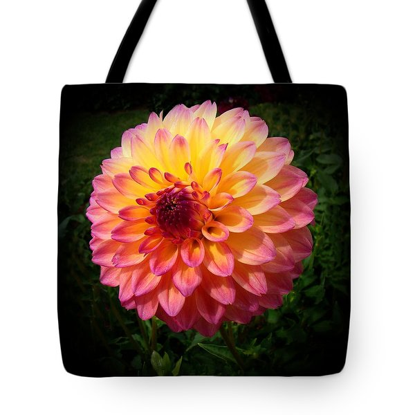Autumn Colors Tote Bag by Nick Kloepping