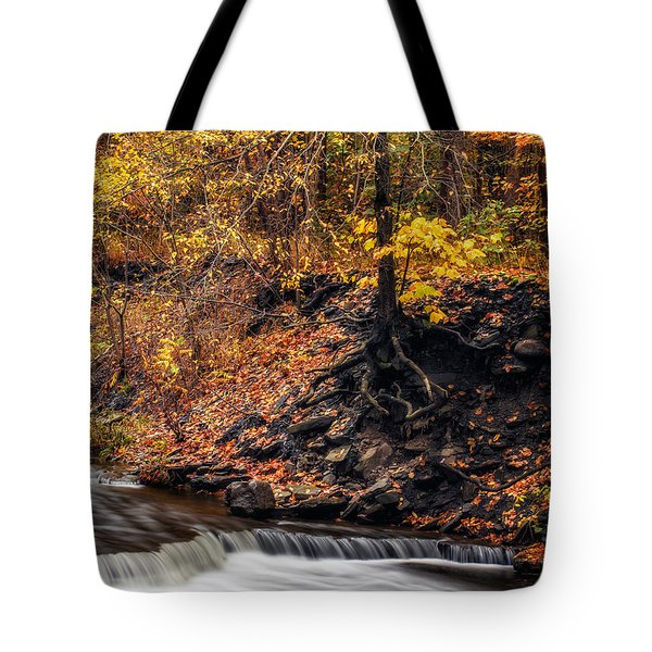 Autumn Flow Tote Bag by Mark Papke