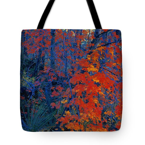 Autumn Foliage Tote Bag by Don Hammond