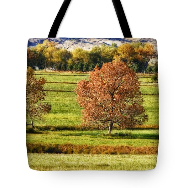 Autumn Landscape Dream Tote Bag by James BO  Insogna