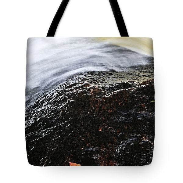 Autumn leaf on river rock Tote Bag by Elena Elisseeva