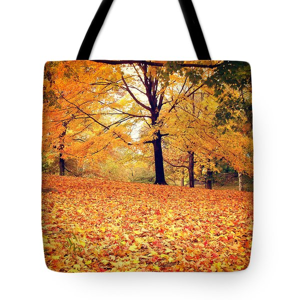 Autumn Leaves - Central Park - New York City Tote Bag by Vivienne Gucwa