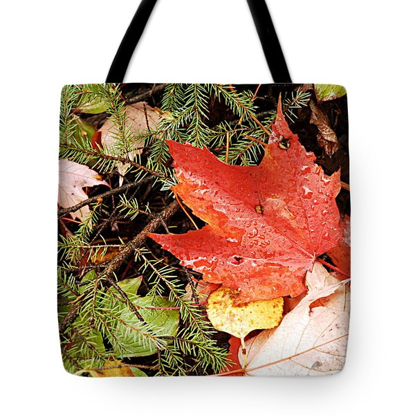 Autumn Leaves Tote Bag by Larry Ricker