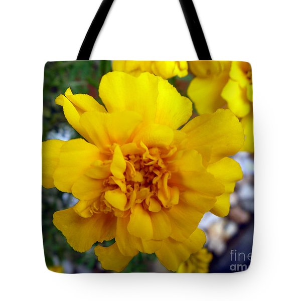 Autumn Marigold 1 Tote Bag by Alys Caviness-Gober