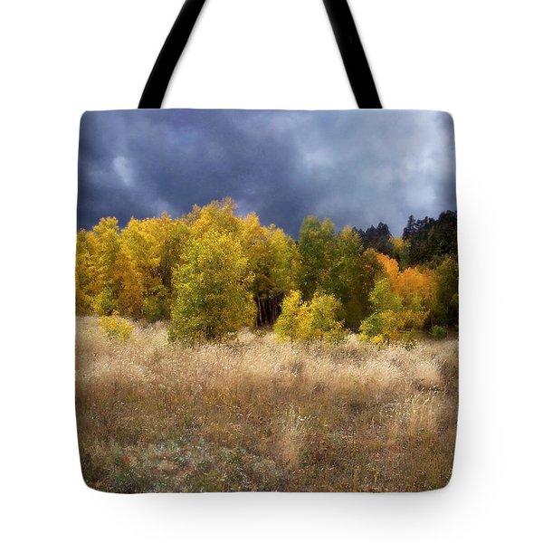 Autumn Meadow Tote Bag by Carol Cavalaris