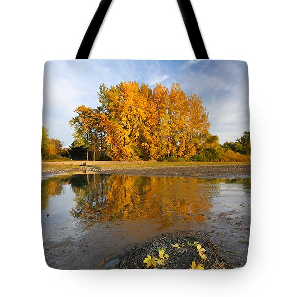 Autumn Nest Tote Bag by Mircea Costina Photography