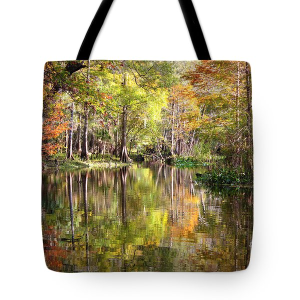 Autumn Reflection on Florida River Tote Bag by Carol Groenen