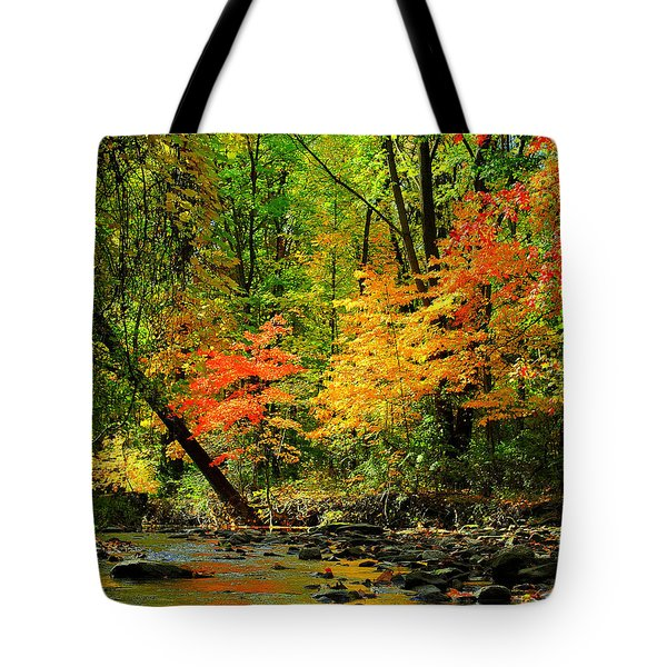 Autumn Reflects Tote Bag by Frozen in Time Fine Art Photography