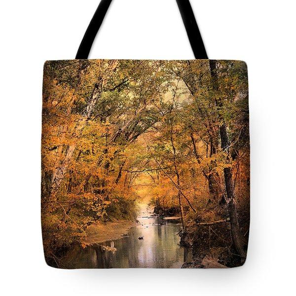 Autumn Riches 2 Tote Bag by Jai Johnson