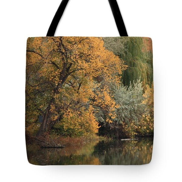 Autumn Riverbank Tote Bag by Carol Groenen