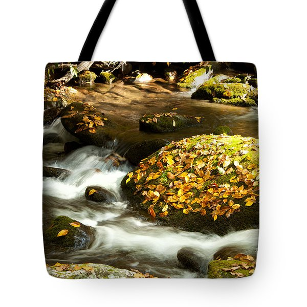 Autumn Stream Tote Bag by Lena Auxier