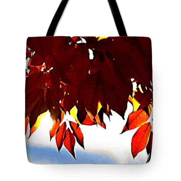 Autumn Sun Glory Tote Bag by Danielle  Parent