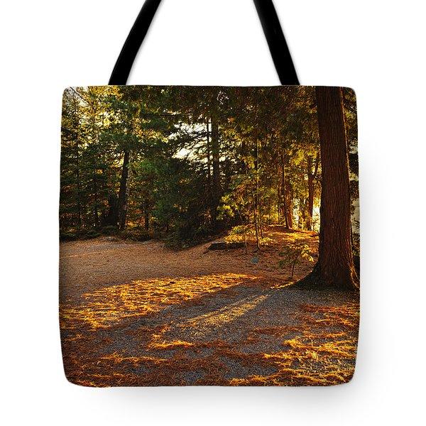 Autumn Trees Near Lake Tote Bag by Elena Elisseeva