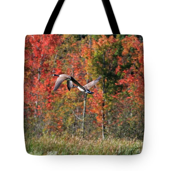 Autumn Vermont Geese And Color Tote Bag by Deborah Benoit