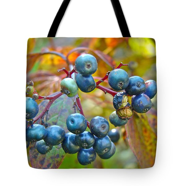 Autumn Viburnum Berries Series #4 Tote Bag by Mother Nature