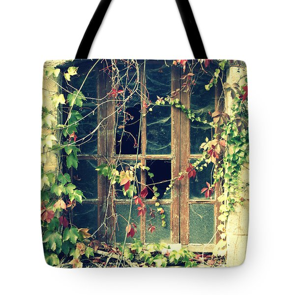 Autumn Vines Across A Window Tote Bag by Georgia Fowler