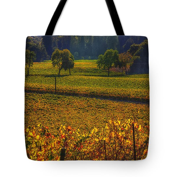 Autumn Vineyards Tote Bag by Garry Gay