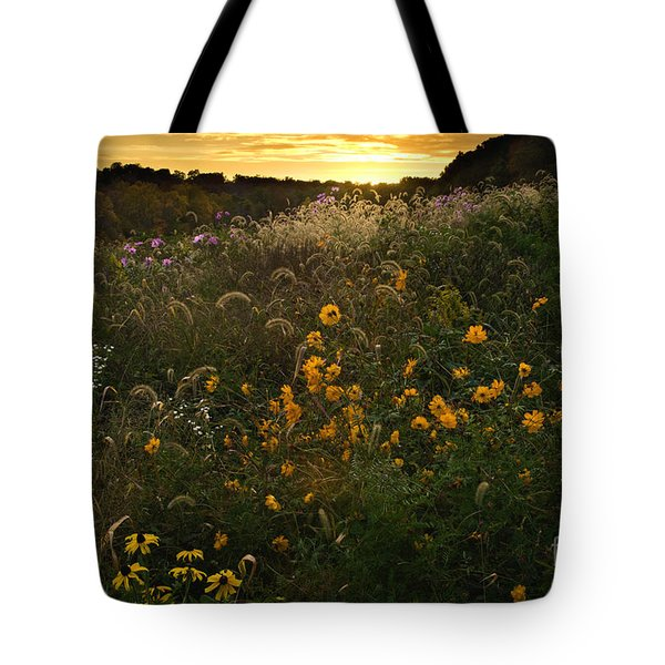 Autumn Wildflower Sunset - D007757 Tote Bag by Daniel Dempster