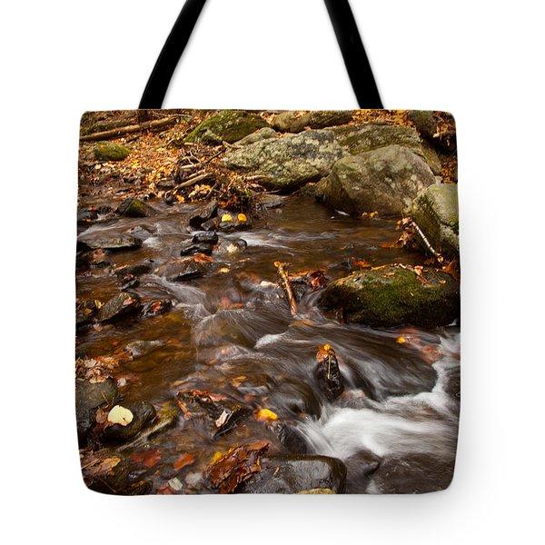 Autumns Creek Tote Bag by Karol Livote