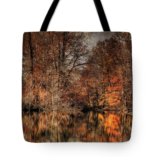 Autumn's End Tote Bag by Paul Ward