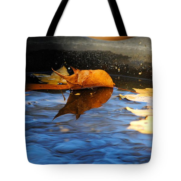 Autumn's Reflection Tote Bag by Jai Johnson