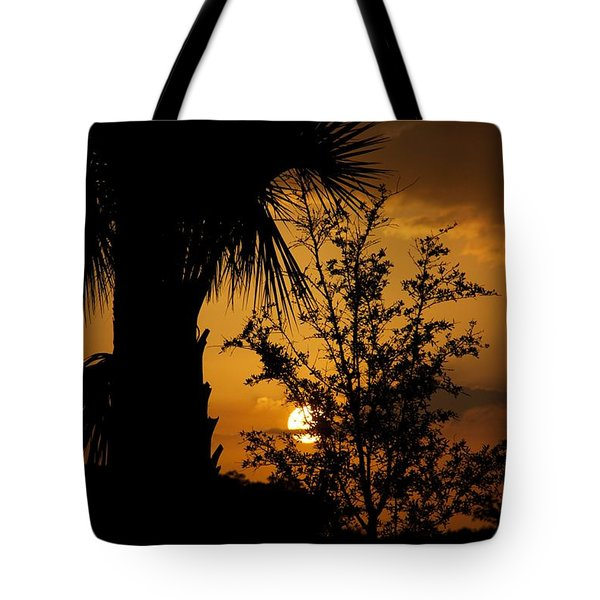 Ave Maria Tote Bag by Joseph Yarbrough