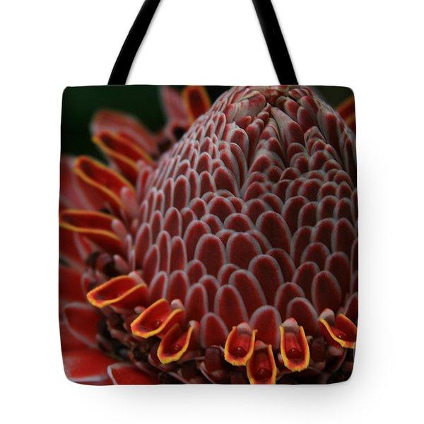 Awapuhi Ko Okoo - Torch Ginger - Etlingera Elatior  - Phaeomeria Magnifica - Hoolawa Liilii Hawaii Tote Bag by Sharon Mau