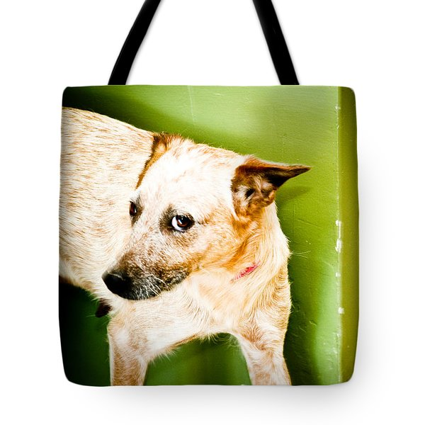 Back Off  Tote Bag by Toni Hopper