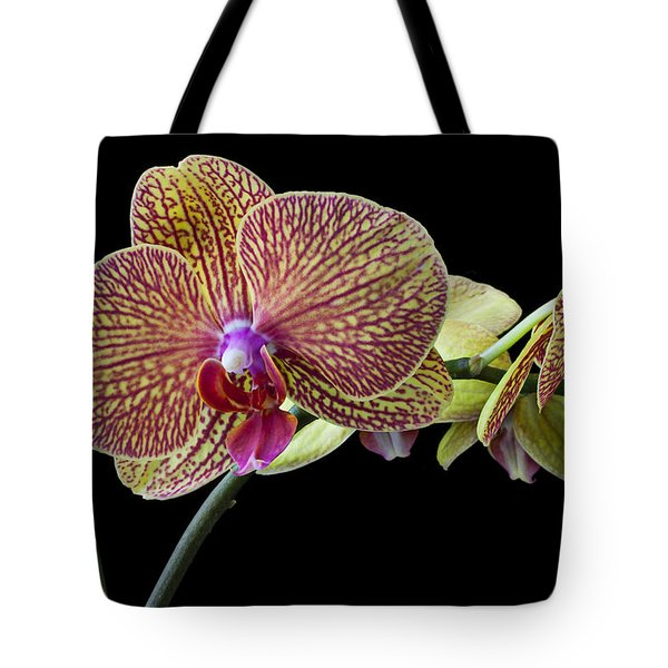 Baeutiful Orchids Tote Bag by Garry Gay