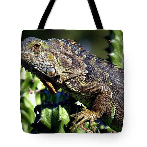 Balance Of Scales Tote Bag by Karen Wiles
