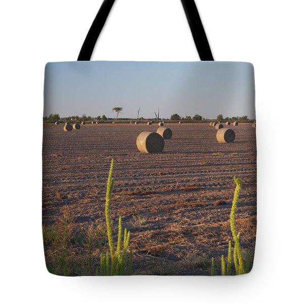 Bales In Peanut Field 12 Tote Bag by Douglas Barnett