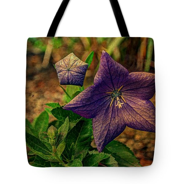 Balloon Flower - Antiqued Tote Bag by Michael Garyet