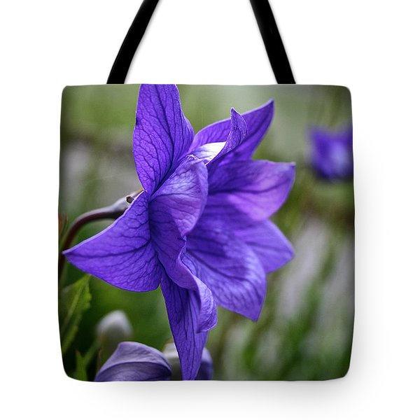 Balloon Flower Profile Tote Bag by Susan Herber