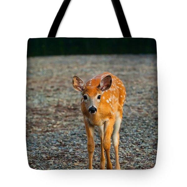 Bambi Tote Bag by Sebastian Musial