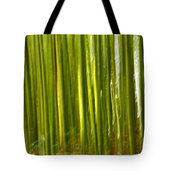 Bamboo Abstract Tote Bag by Gaspar Avila