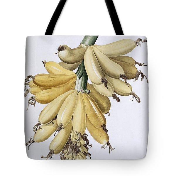 Banana Tote Bag by Pierre Joseph Redoute