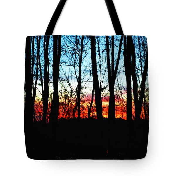 Bare Trees At Sunset 2 Tote Bag by Skip Nall
