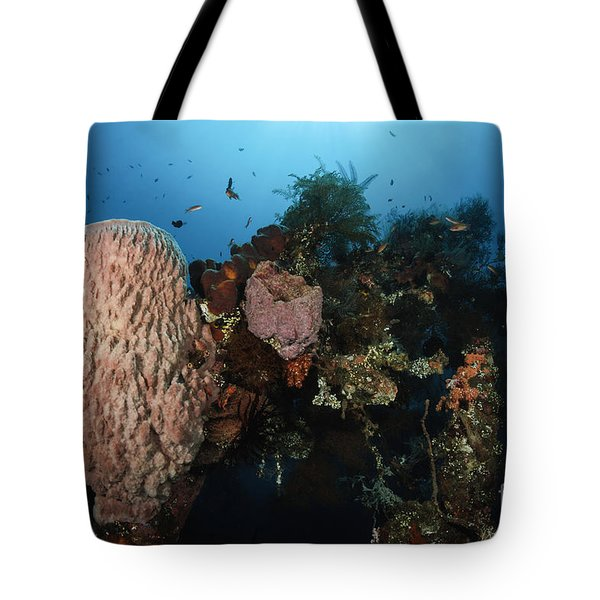 Barrel Sponge On Liberty Wreck, Bali Tote Bag by Todd Winner