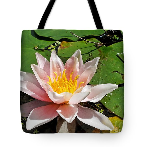 Basking In The Sunshine Tote Bag by Kaye Menner