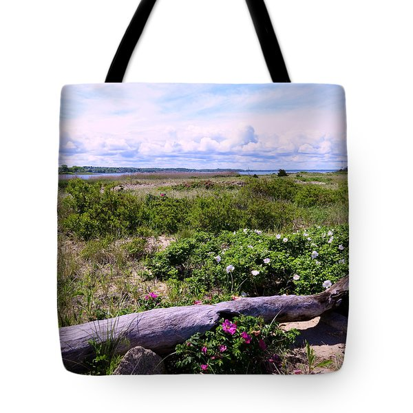 Beach Roadscape Tote Bag by Janice Drew