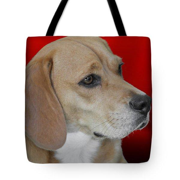 Beagle - A Hound's Hound Tote Bag by Christine Till