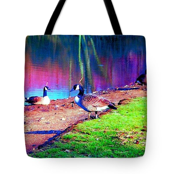 Beautiful Canadian Geese  Tote Bag by Annie Zeno
