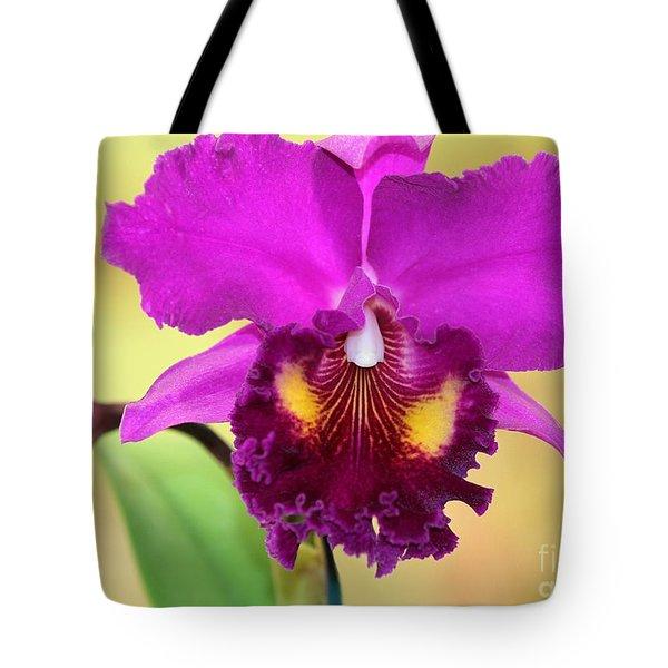 Beautiful Hot Pink Orchid Tote Bag by Sabrina L Ryan