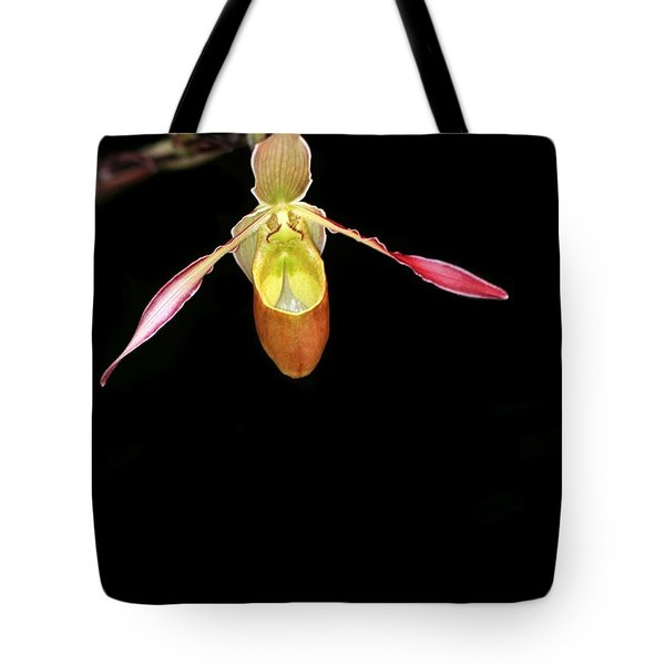 Beautiful Lady Slipper Orchid Tote Bag by Sabrina L Ryan