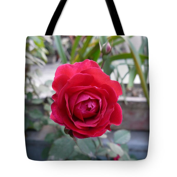 Beautiful Red Rose In A Small Garden Tote Bag by Ashish Agarwal