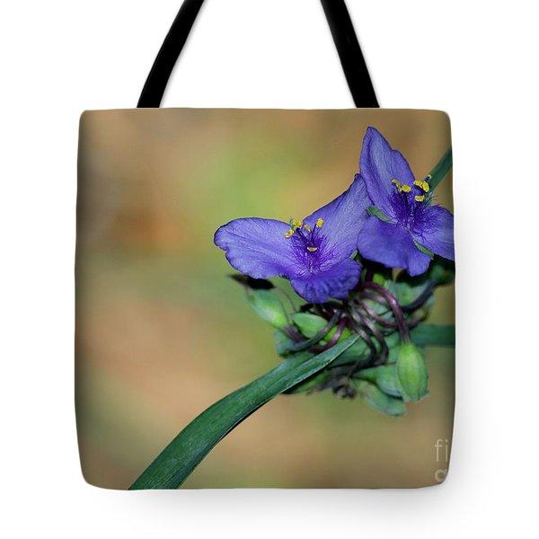 Beautiful Spiderwort Tote Bag by Sabrina L Ryan