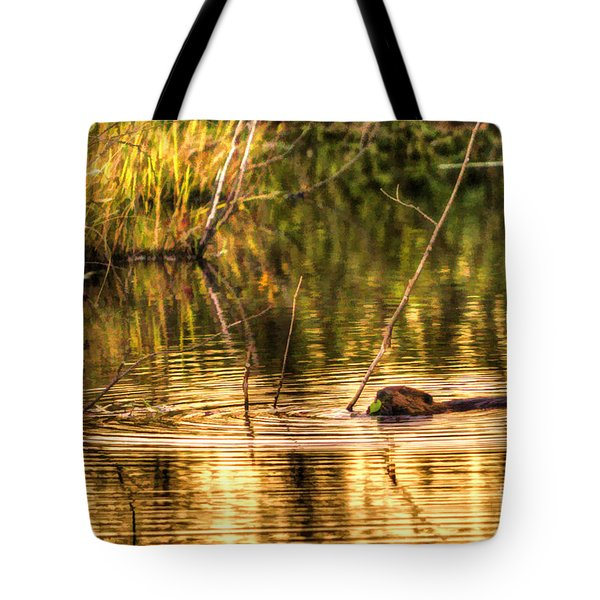 Beaver Eating Late Evening Tote Bag by Dan Friend