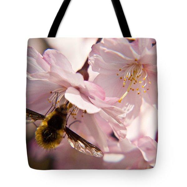 Bee Fly Feeding 6 Tote Bag by Douglas Barnett