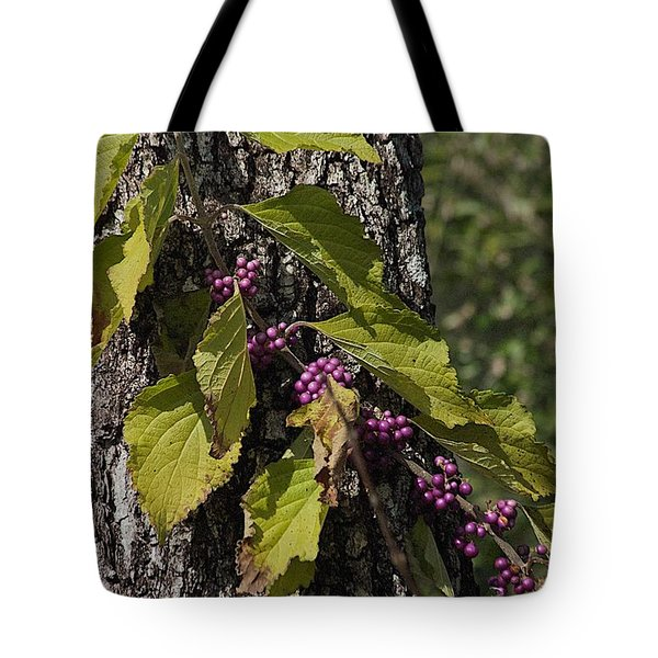 Behind The Fence Tote Bag by Joseph Yarbrough